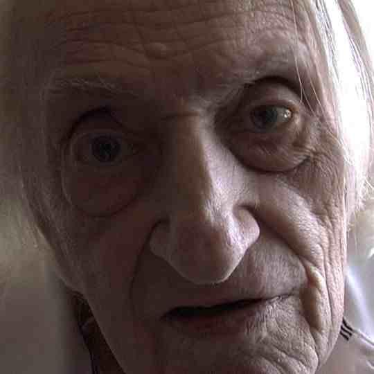 Translating Edwin Honig : A Poet's Alzheimer's d'Alan Berliner