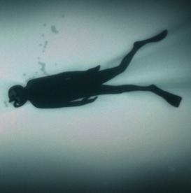 Dans les eaux profondes de Sarah Van Den Boom