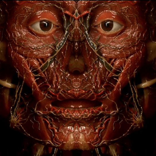 Petite Anatomie de L'Image de Olivier Smolders