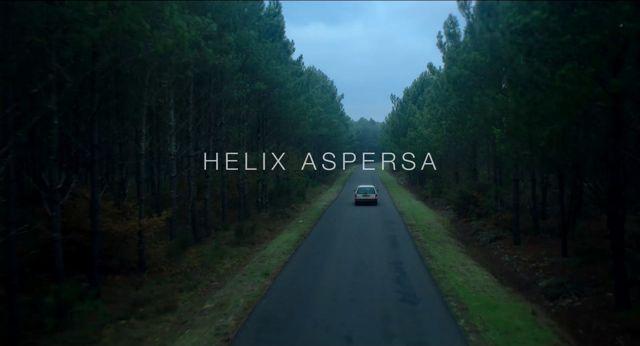 Helix Aspersa 001