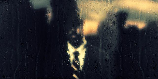 The-Weatherman-and-the-Shadowboxer-Randall-Okita1