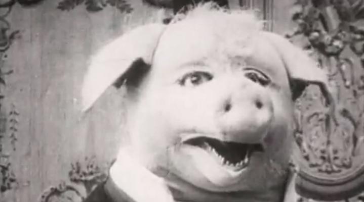 le-cochon-danseur