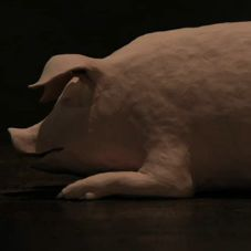 Dans le cochon tout est bon de Iris Alexandre
