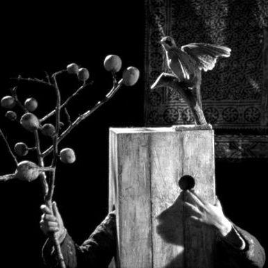 Boro in the Box de Bertrand Mandico